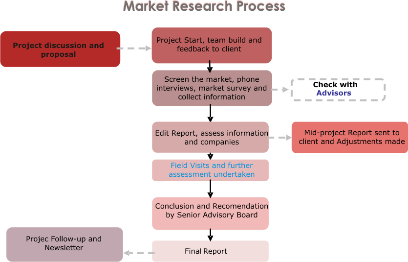 market research process essay